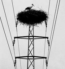 sableuse electrique